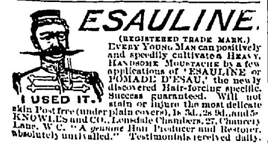 Esauline Penny Illustrated Post 20 July 1895