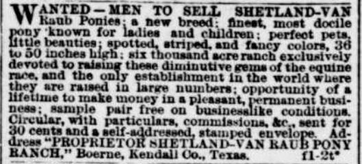 Van Raub Ponies, Evening Star, Washington DC, 1 Feb 1889