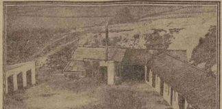 Maggot sheds at Jerusalem Farm, pictured in the Leeds Mercury, 31 July 1911. (British Newspaper Archive)